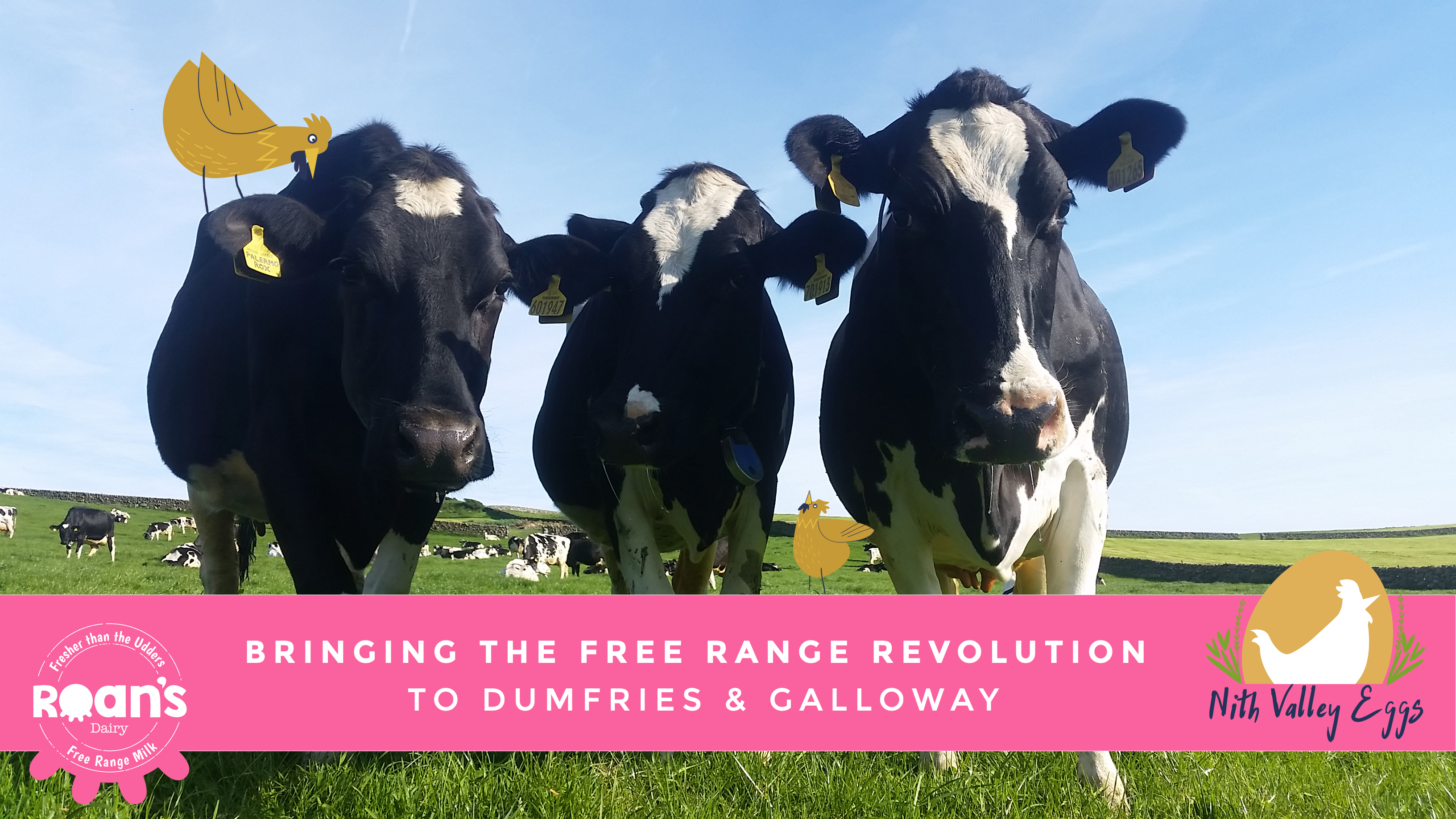 The Free Range Farming Revolution is taking Dumfries & Galloway by storm!