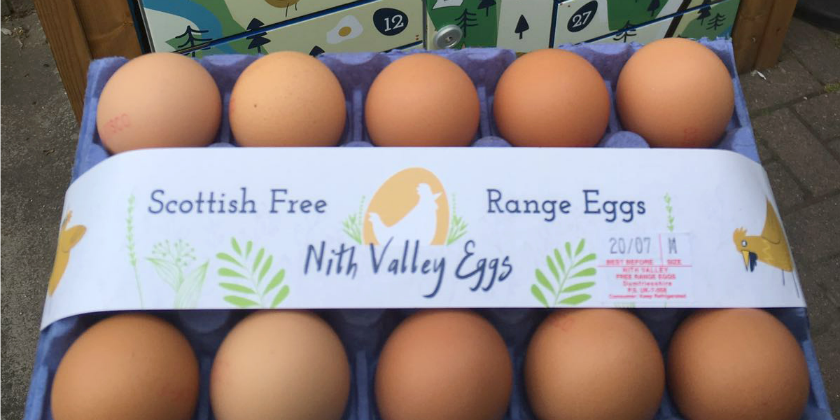 On Your January Health Kick? How Eggs Can Help!